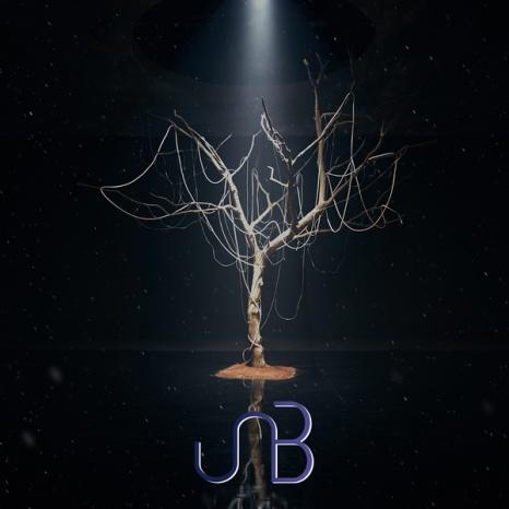 unb-boyhood-2